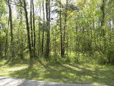 Conroe Residential Lots & Land For Sale: Riverbrook