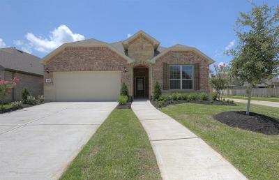 Fort Bend County Single Family Home For Sale: 24623 Twilight Hollow Lane