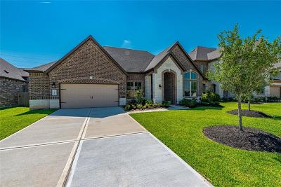 Katy Single Family Home For Sale: 3515 Harper Ferry Place