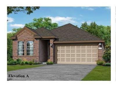 Dickinson, Friendswood Single Family Home For Sale: 251 Dale Ridge Lane Lane