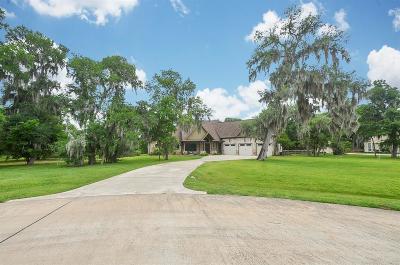 Fulshear Single Family Home For Sale: 3007 Wellspring Lake Drive