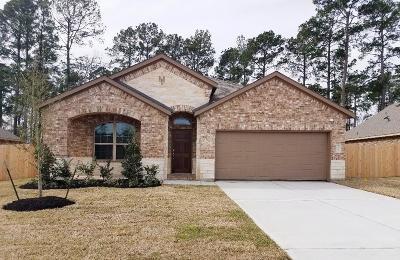 Houston Single Family Home For Sale: 18119 Humber River Lane