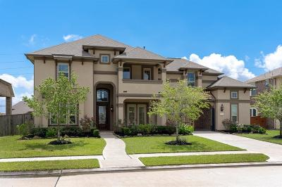 Pearland Single Family Home For Sale: 11906 Linden Walk Lane