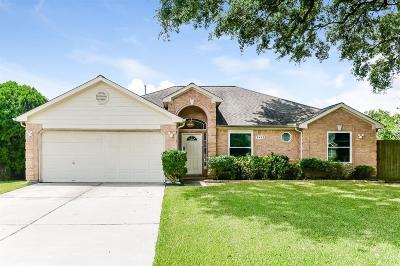Houston Single Family Home For Sale: 2402 Grand Teton Drive