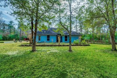 Spring Single Family Home For Sale: 3424 Spring Creek Drive
