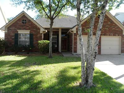 Single Family Home For Sale: 1215 Sandy Plains