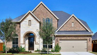 Katy Single Family Home For Sale: 6914 Crane Court