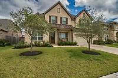 Pearland Single Family Home For Sale: 3407 Maple Harvest Lane
