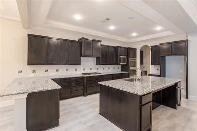 Sugar Land Single Family Home For Sale: 5323 Abington Creek