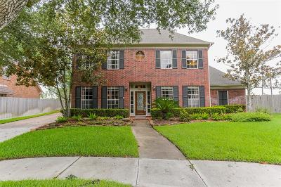 Sugar Land Single Family Home For Sale: 3206 Seahorse Cove