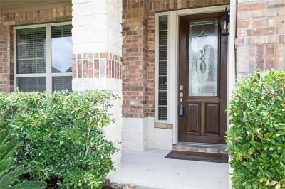 Pearland Single Family Home For Sale: 1413 Copper Ridge Lane