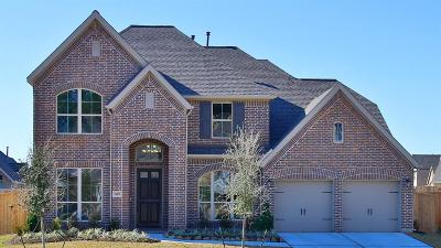 Tomball Single Family Home For Sale: 21439 Rose Loch Lane