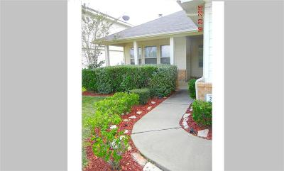 Katy Single Family Home For Sale: 25123 Clover Ranch Drive