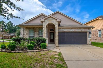 Porter Single Family Home For Sale: 21468 Naples Hollow Lane