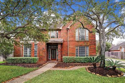 Houston Single Family Home For Sale: 9607 Willowbridge Park Boulevard