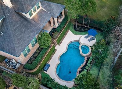 The Woodlands Single Family Home For Sale: 238 Greylake Place