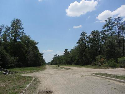 Humble Residential Lots & Land For Sale: Caspian Drive Drive