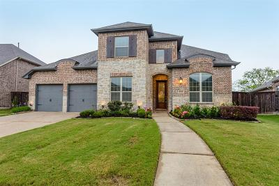 Sugar Land Single Family Home For Sale: 6611 Nicholas Trail