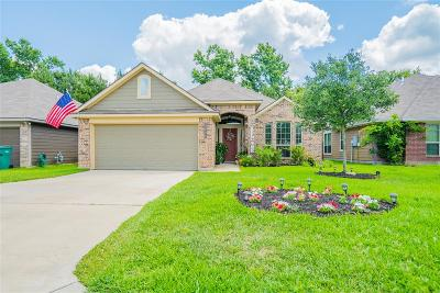 Willis Single Family Home For Sale: 5808 Olde Oaks Drive