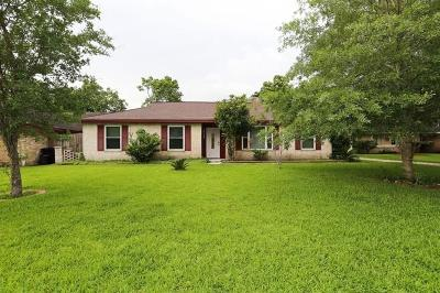 Friendswood Single Family Home For Sale: 16918 Paint Rock Road