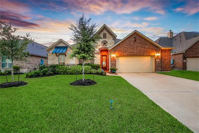 League City Single Family Home For Sale: 2969 Gibbons Hill Lane