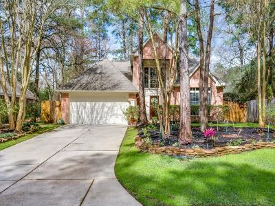 The Woodlands Single Family Home For Sale: 60 N Winterport Circle
