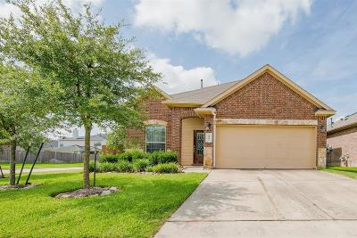 Tomball Single Family Home For Sale: 8903 Finnery Drive