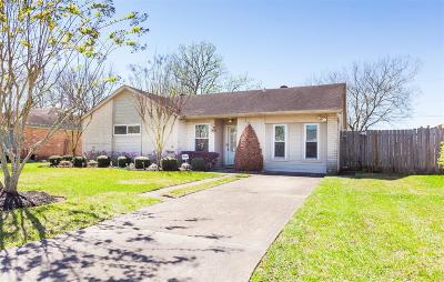 Friendswood Single Family Home For Sale: 300 Brigadoon Lane