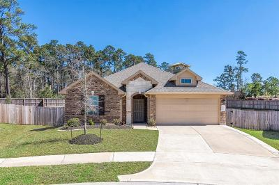 Conroe Single Family Home For Sale: 12203 Antilles Lane
