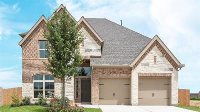 Pearland Single Family Home For Sale: 3702 Timber Grove Court