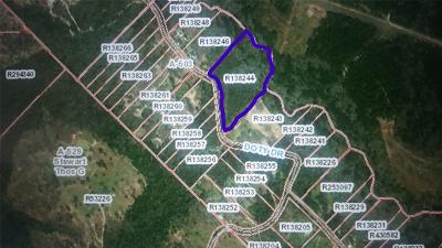 Conroe Residential Lots & Land For Sale: Peach Creek Drive