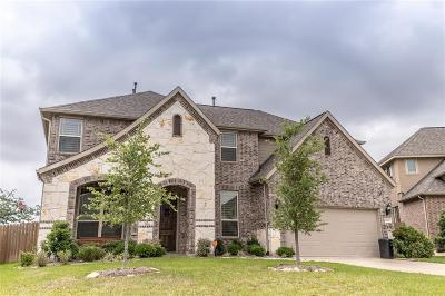 Tomball Single Family Home For Sale: 9410 Three Stone Lane