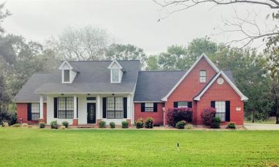 Angleton Single Family Home For Sale: 315 Cr 893