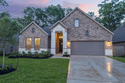 New Caney Single Family Home For Sale: 23613 Sage Villa Drive
