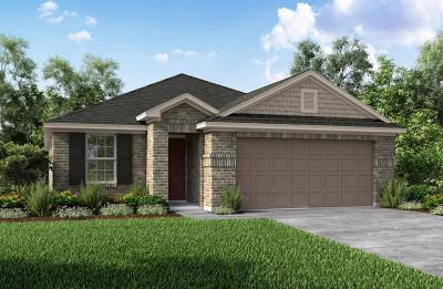 Tomball Single Family Home For Sale: 19402 Tobiano Park Drive