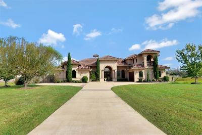 Friendswood Single Family Home For Sale: 3015 Mandale Road