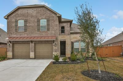 Texas City Single Family Home For Sale: 2127 White Cove Drive