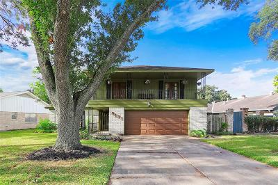Houston Single Family Home For Sale: 9131 Tooley Drive