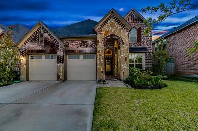 Fort Bend County Single Family Home For Sale: 29115 Bentford Manor Court