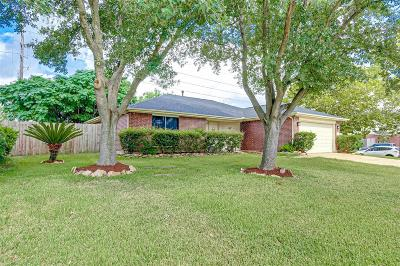 Houston Single Family Home For Sale: 5159 W Harrow Drive