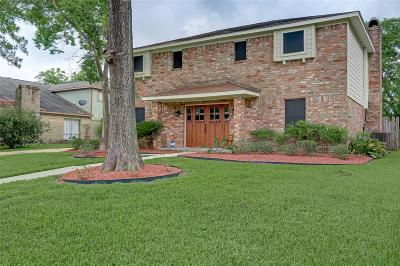 Houston Single Family Home For Sale: 230 Holyhead Drive