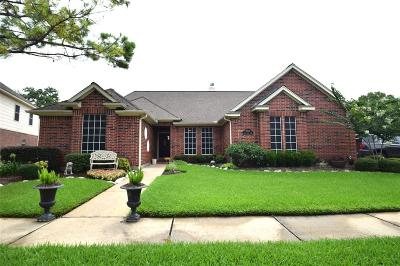 Houston Single Family Home For Sale: 6511 Mesa Vista Court