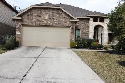 Eagle Springs Single Family Home For Sale: 12931 Madison Boulder Lane