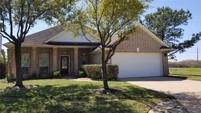 Houston Single Family Home For Sale: 17339 Danbury Bridge Drive
