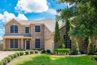 Pearland Single Family Home For Sale: 3615 Canterbury Park Drive