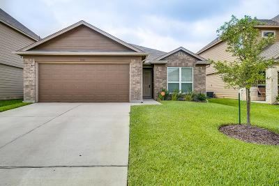 Katy Single Family Home For Sale: 3335 View Valley Trl