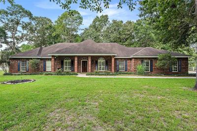 Huffman Single Family Home For Sale: 202 Lake Commons Court