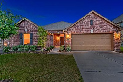 Pearland Single Family Home For Sale: 6009 Little Grove Drive