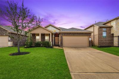 Katy Single Family Home For Sale: 23643 San Servero Drive