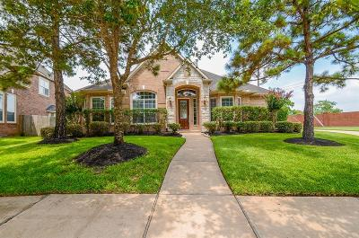 Houston Single Family Home For Sale: 16542 Ruby Meadow Drive